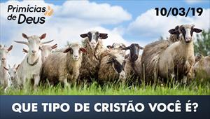 Bode ou ovelha: Que tipo de cristão você é? - Primícias de Deus – 10/03/19
