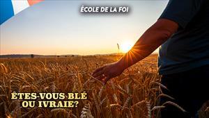 Êtes-vous blé ou ivraie? - École de la foi - 11/12/19 - France