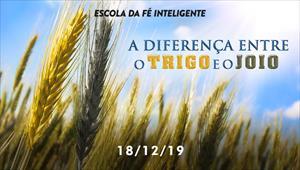 A diferença entre o trigo e o joio - Escola da Fé Inteligente - 18/12/19