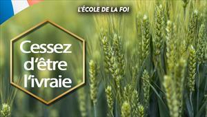 Cessez d'être l'ivraie - L'école de la foi - 25/12/19 - France