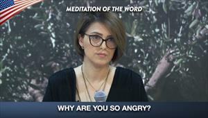 Why are you so angry? - Meditation of the word