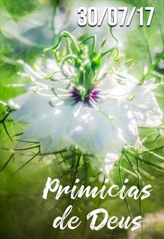 Primícias de Deus - 30/07/2017