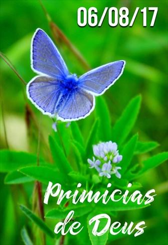 Primícias de Deus - 06/08/2017