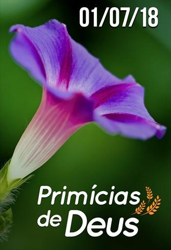 Primícias de Deus - 01/07/18
