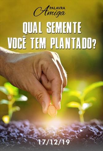 Qual semente você tem plantado? - Palavra Amiga - 17/12/19