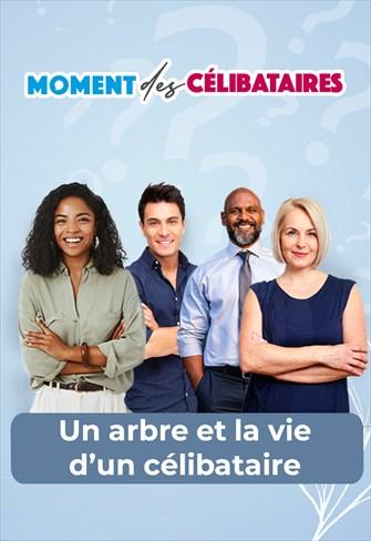 Moment des célibataires - 26/08/21 - France - Un arbre et la vie d'un célibataire